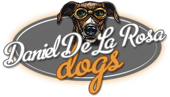 Daniel De La Rosa Dogs - Dog Training Fort Lauderdale, Miami, Palm Beach